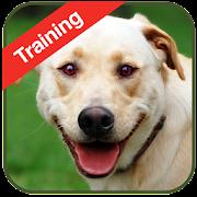 Dog Training 1.2 Icon