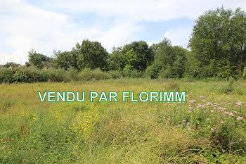 terrain à Merlimont (62)