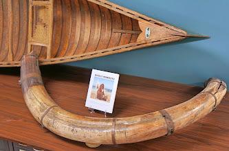 Photo: Mammoth tusk, origin unknown
