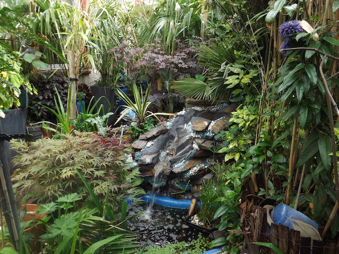 Gardens to open as part of national scheme