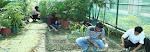 Top B.Sc Agriculture College in Dehradun
