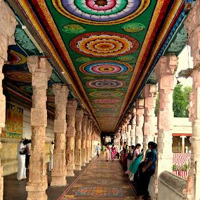 Meenakshi Temple - Madurai, India by Manoj Kumar Kd - Buildings & Architecture Places of Worship