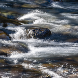 by Keith Sutherland - Nature Up Close Water ( canada, british columbia )