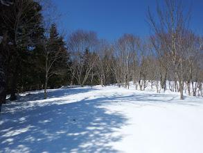 気持ちのよい雪道