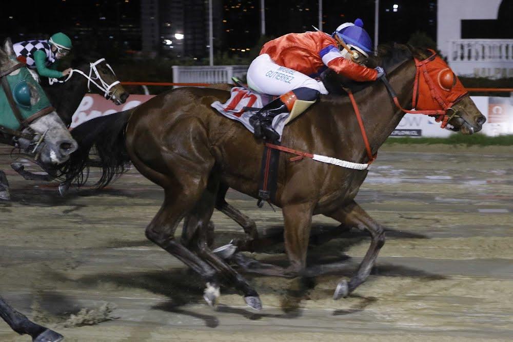 Doce Pasos (Rydilluc) conquista Handicap (1100m-Arena-VSC). - Staff ElTurf.com