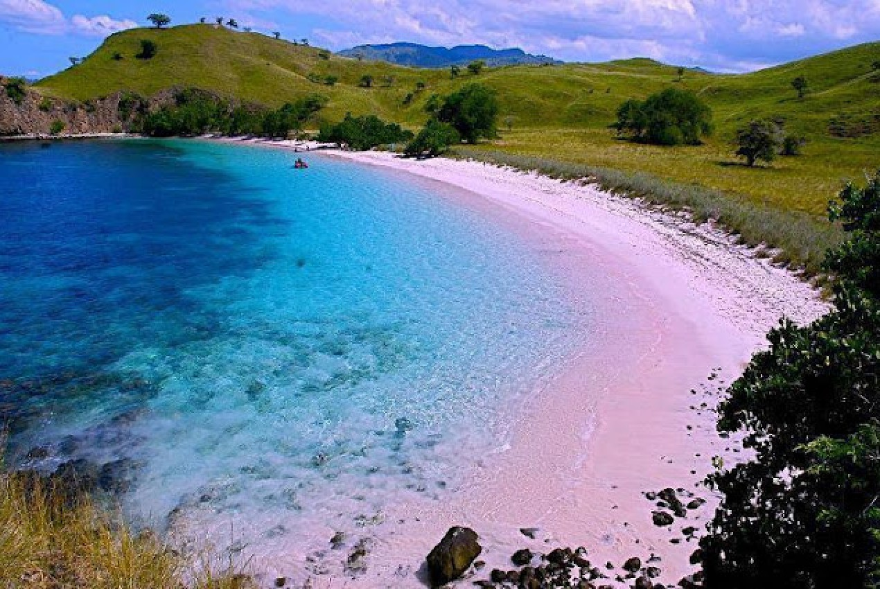 Pink Beach, All Ever You Wanted In Cheap Way, Lombok Island