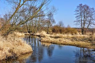 Photo: 54,3 km rozgałęzienie rzeki