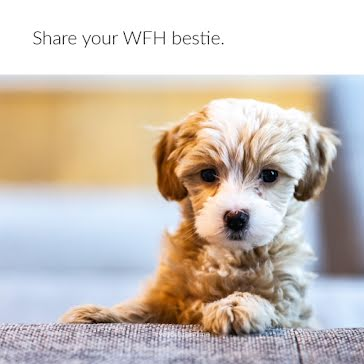 WFH Bestie - Instagram Post template