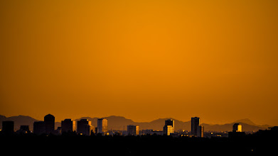 Photo: Golden Glow
