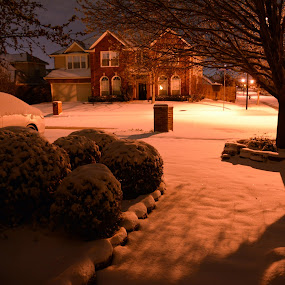Winter storm in Texas by Anna Cole - Landscapes Weather ( car, building, texas, street, house, storm, winter, tree, bushes, snow, bush, night, light,  )