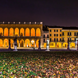 Prato della valle, Padova.. by night by Hariharan Venkatakrishnan - City,  Street & Park  Night
