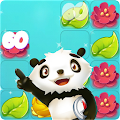 PANDA BEAR - Match 3 Puzzle Adventure
