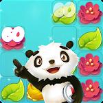 PANDA BEAR – Match 3 Puzzle Adventure icon
