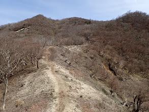 猫岳へ登る