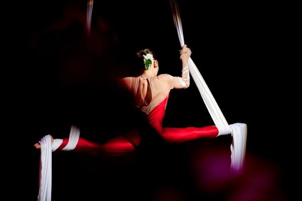 Equilibrio circense di Andrea Izzotti