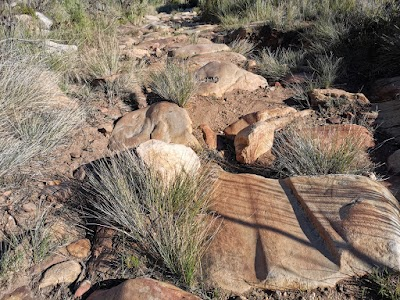 Ox-wagon wheel ruts in the sandstone