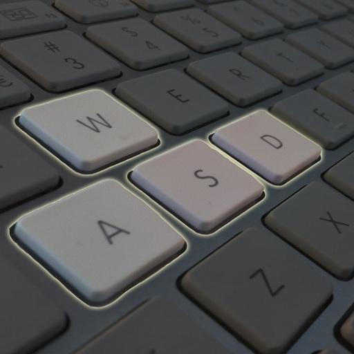 WASD System avatar image