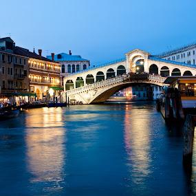 Rialto brigde in Venice,  Italy by Max Mayorov - Landscapes Travel ( rialto, landmark, scenics, venice, travel, italy, destination )