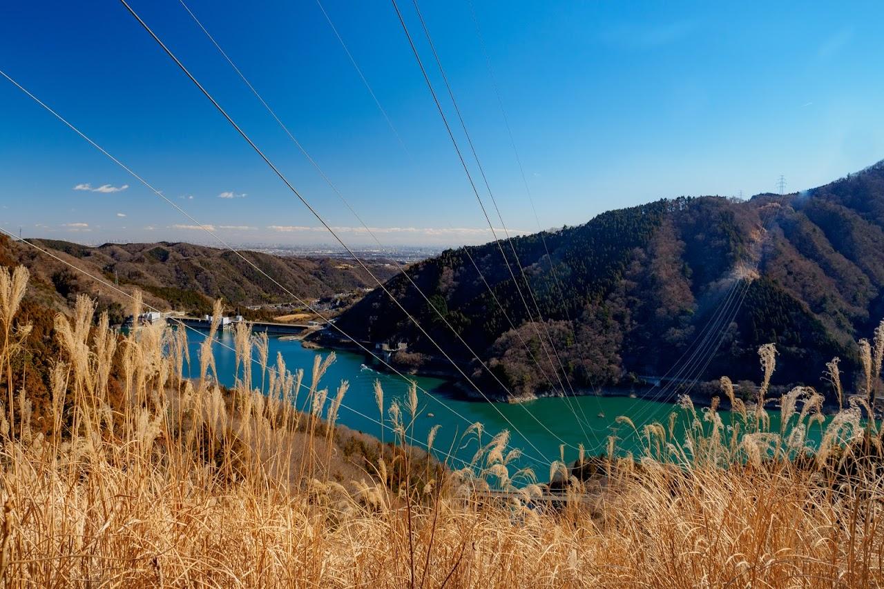 宮ヶ瀬湖が一望できます
