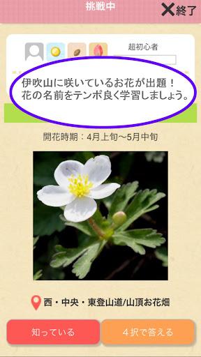 花の名前ダウト 伊吹山