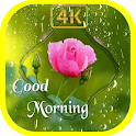 Good Morning Flowers icon