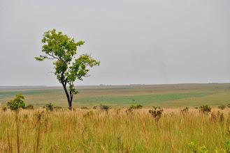 Photo: Congo Landscape