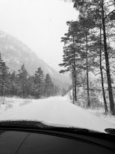 Photo: Auf dem Weg ins Skigebiet Bortelid. Ca. 1 1/2 h Autofahrt von Mandal entfernt.