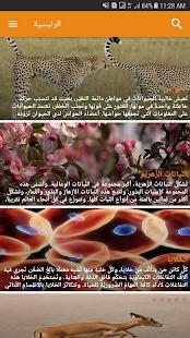 Online Butterfly Encyclopedia - náhled