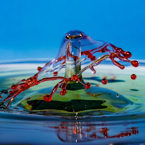 Go for a ride? by Steve Kazemir - Abstract Water Drops & Splashes ( drop, red, macro, green, double, timing, water, splash )
