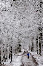 "Photo: 1. plads februar 2019, foto: Hans Blensø. Tema: ""Vinter""."