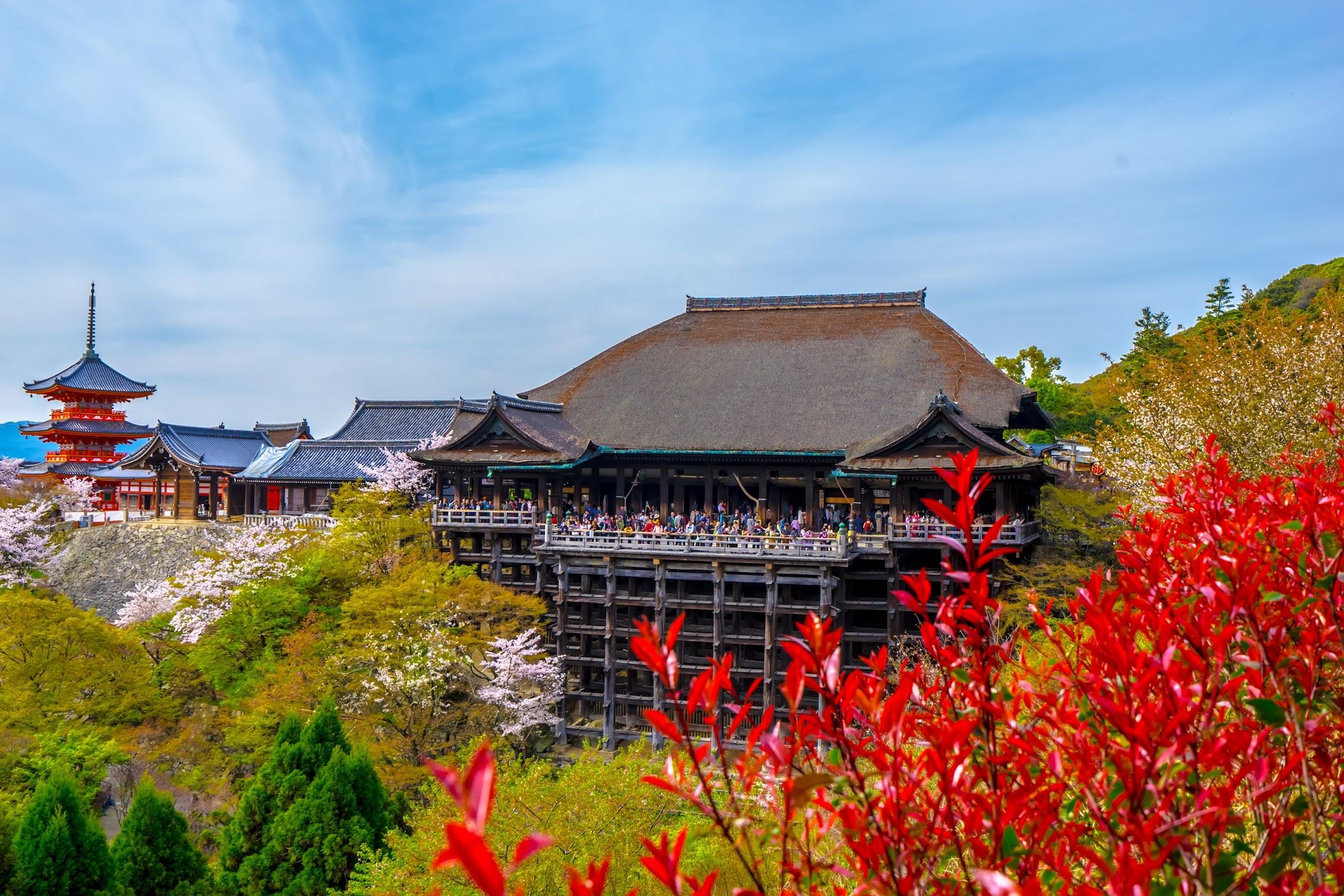 京都 清水寺 本堂 舞台 三重塔1