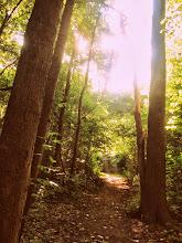 Photo: Beautiful morning path at Wegerzyn Gardens in Dayton, Ohio.