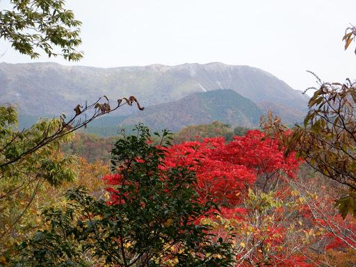 奥に霊仙山