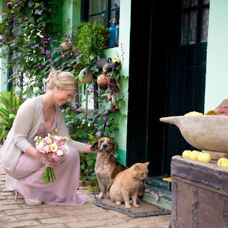 Wedding photographer Vasilije Bajilov (clickers). Photo of 25.10.2015