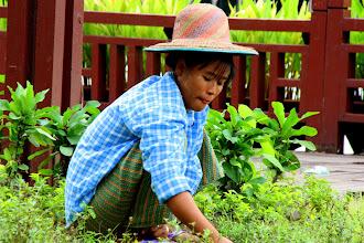 Photo: Year 2 Day 54 -  Ground Worker at Kandawgyi Lake in Yangon