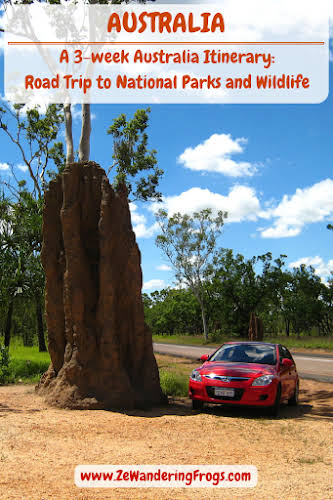 Giant Cathedral Termite Mounds, Litchfield National Park, Australia Travel