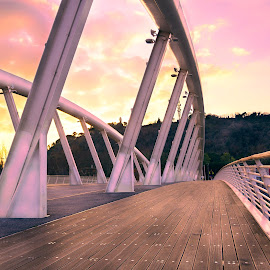 Ponte della Musica by David Marjanovic - Buildings & Architecture Bridges & Suspended Structures ( rome, sunset, structures, bridge, clouds, italy, suspended, colors, architecture )