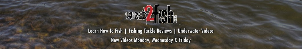 Wired2Fish Banner