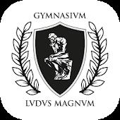 Ludus Magnum Gymnasium