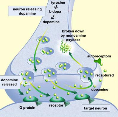 biochemistry | BCA Chemistry