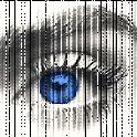 Wort im Auge icon