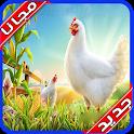 دليل تربية الدجاج مجانا بدون نت 2020 icon