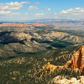 Bryce National Park by Ashish Gupta - Landscapes Mountains & Hills ( utah, national, bryce )