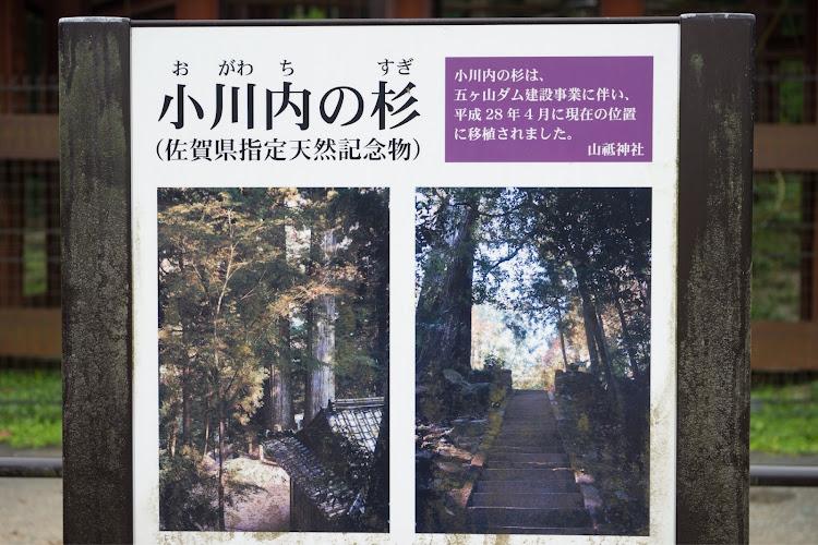 SL R230の福岡,五ケ山ダム,小川内の杉,車以外の🐢活,嫁は二日酔い🤮に関するカスタム&メンテナンスの投稿画像2枚目