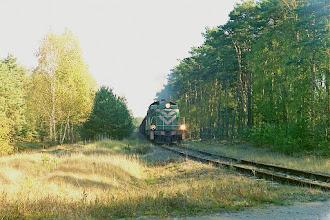 Photo: SM42-186 & SM42-457 ze składem ładownych węglarek do EC Toruń Zachód {Białka / Przysiek; 2003-10-27}