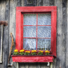 Red Framed Window by Patricia Phillips - Buildings & Architecture Other Exteriors ( old cabins windows red )
