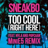 Too Cool (Right Here) (feat. Nyla & Popcaan)