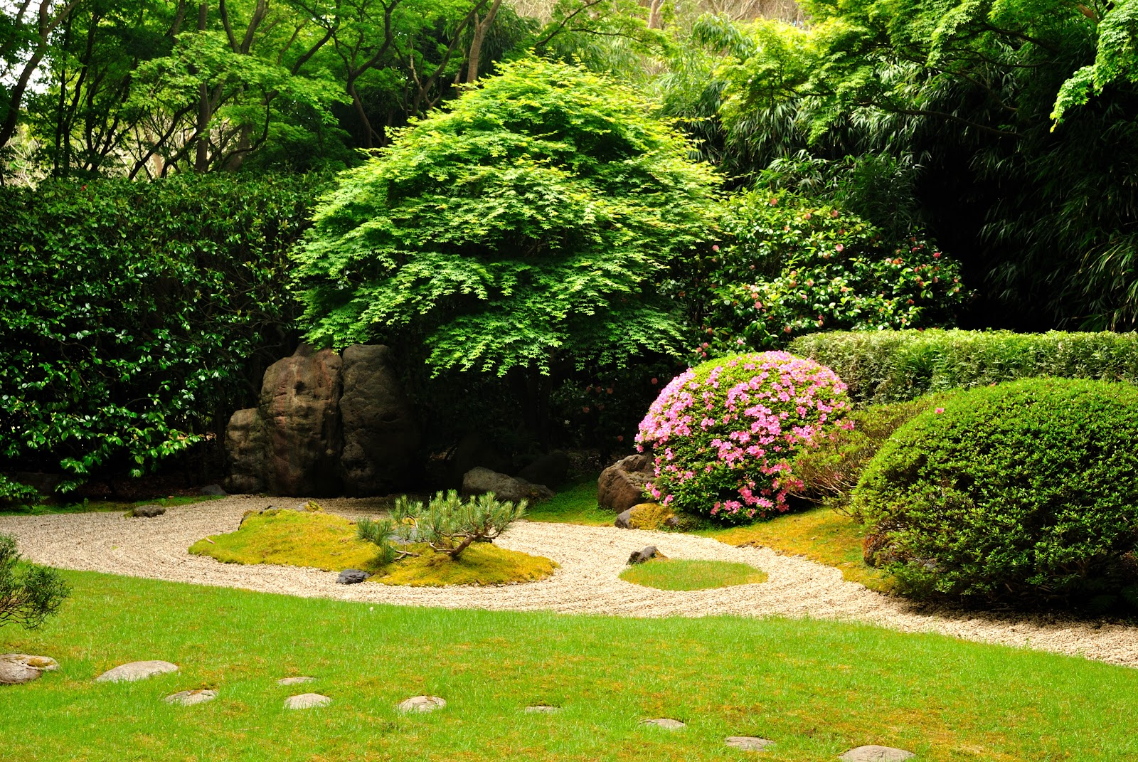 Japanese_Tea_Garden_(San_Francisco%2C_California).jpg
