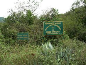 Photo: welcome to pachamalai.
