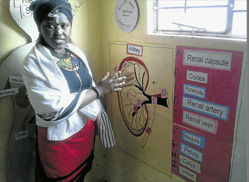 ACQUIRING SKILLS: Canaan Academy Grade 11 pupil Asisipho Mabuza explains her poster project to guests during a science and maths exhibition. Picture: SUPPLIED